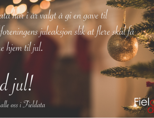 God jul fra oss i Fieldata!